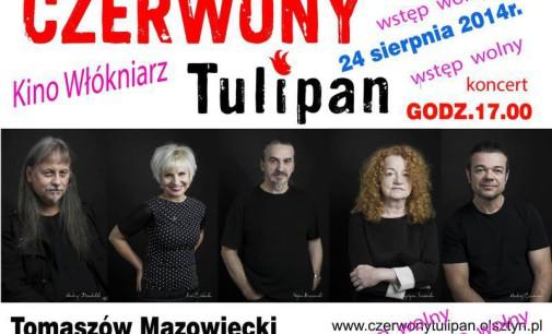 Koncert zespołu Czerwony Tulipan