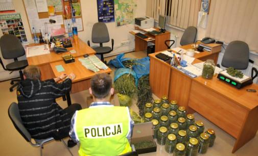 Tomaszowscy kryminalni przechwycili ponad 8 kilogramów narkotyków