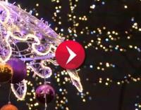 Jak dużo wiesz o tradycjach wigilijnych? (wideo)