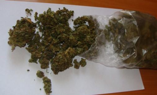 """Marihuana na """"babskim wieczorze"""" przy BGW. Kobiecie grozi do 3 lat pozbawienia wolności"""