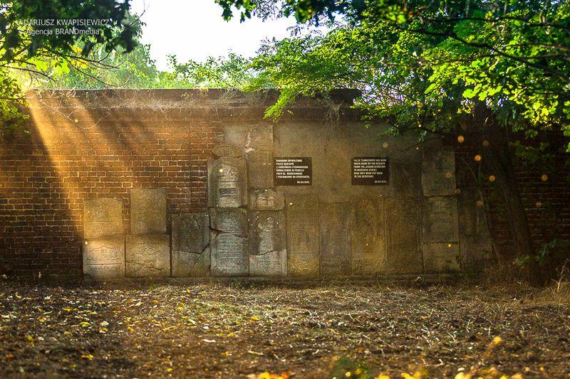 cmentarz-zydowski-tomaszow_002