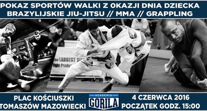 Pokaz sztuk walki w centrum Tomaszowa