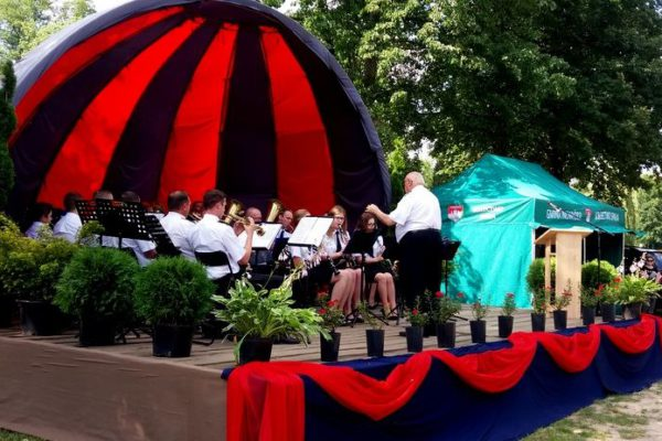 koncert_orkiestr (5)