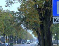 Tomaszowianie zdecydują jak będzie wyglądała Strefa Płatnego Parkowania (ANKIETA)