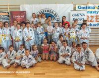 Sukcesy najmłodszych tomaszowskich adeptów Taekwon-do (ZDJĘCIA i WIDEO)