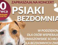 """""""Psiaki bezdomniaki"""". Festyn i koncert na pl. Kościuszki"""