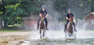 Koronawirus. Policyjny śmigłowiec, dodatkowe patrole piesze i konne w parkach i miejscach wypoczynku
