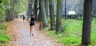Otwarte lasy i parki, więcej klientów w sklepach. Od 20 kwietnia pierwszy etap znoszenia ograniczeń