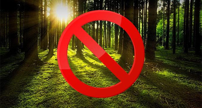 UWAGA! Zakaz wstępu do lasu!