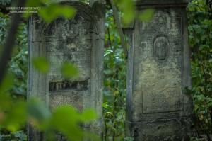 cmentarz-zydowski-tomaszow_005