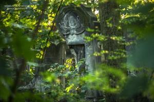 cmentarz-zydowski-tomaszow_011