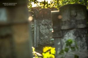 cmentarz-zydowski-tomaszow_013
