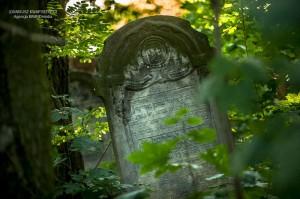 cmentarz-zydowski-tomaszow_014