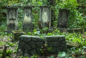 cmentarz-zydowski-tomaszow_015