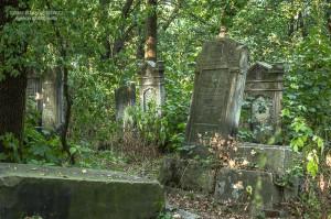 cmentarz-zydowski-tomaszow_022