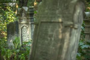 cmentarz-zydowski-tomaszow_027