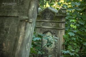 cmentarz-zydowski-tomaszow_029