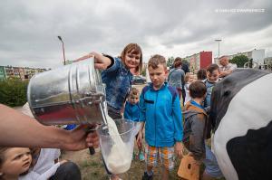 Piknik Rodzinny w SP nr 1 - 10 06 2017 880